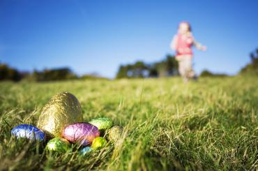 Wyau Pasg yn cuddio yn y glaswellt / Easter eggs hiding in the grass